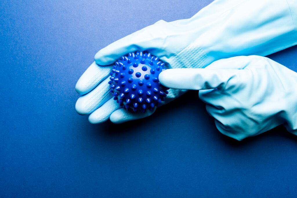 """Rubber gloves holding """"virus"""" model"""
